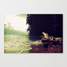 Salty Sunsest Canvas Print