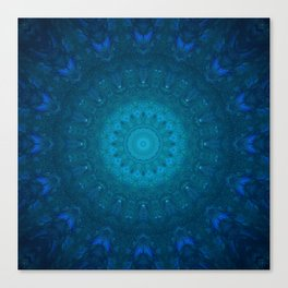 Blufish Canvas Print