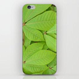 Green leaves II iPhone Skin