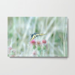"""Swallowtail & Thistles"" by Murray Bolesta Metal Print"
