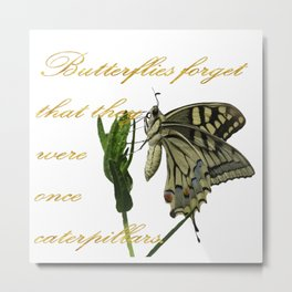 Butterflies Forget They Were Once Caterpillars Proverbial Text Metal Print