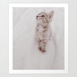 Good Morning Kitty Art Print