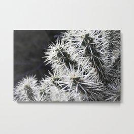 Prickly Metal Print