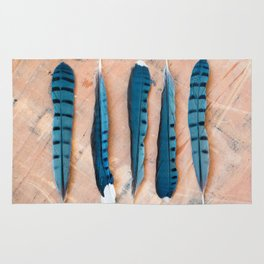 Blue jay feathers Rug