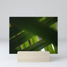 Criss-crossed Palm Fronds Mini Art Print