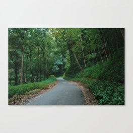 Forest route Canvas Print