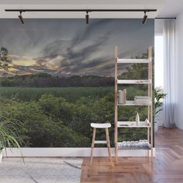 Smokey spring sunset in the woods Wall Mural