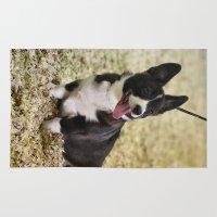 corgi Area & Throw Rugs featuring Cute Corgi by IowaShots