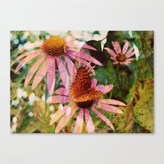Butterfly ::  Canvas Print