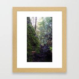 Banana slug Framed Art Print