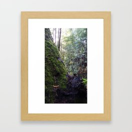 Banana slug Framed Art Print