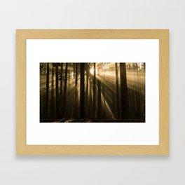 Polipoli Evening Light Framed Art Print