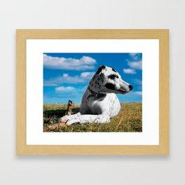 The Stick Keeper. Framed Art Print