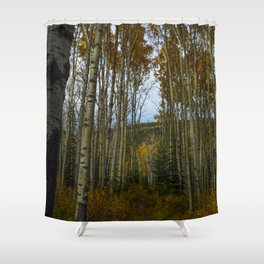 Trembling Aspen Trees in Jasper National Park Shower Curtain