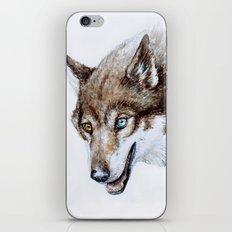 Heterocromia wolf iPhone & iPod Skin