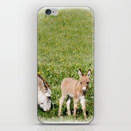 Donkey Baby  iPhone Skin