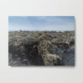Alien Landscape Metal Print