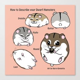 How to Describe your Dwarf Hamsters Canvas Print