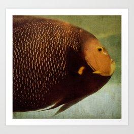 a fat fish Art Print