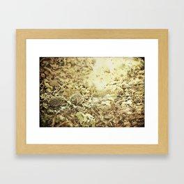 oilk Framed Art Print