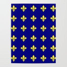 Fleur de lys 1-lis,lily,monarchy,king,queen,monarquia. Poster