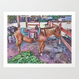 Horse at zoo Art Print