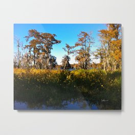 Swamp Flowers - Lake Martin LA Metal Print