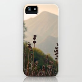 Ojai Mighty Mountain California Shine iPhone Case
