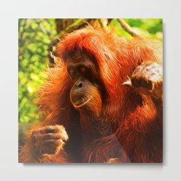 Animal ArtStudio 3916 Orang Metal Print