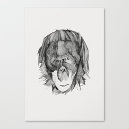 Seven Monkeys – Envy Canvas Print