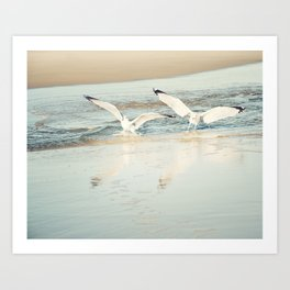 Seagull Beach Photography, Shore Birds Art, Pale Blue Ocean Bird Print, Coastal Photo Art Print