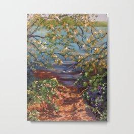 THE LAKE PATH Metal Print