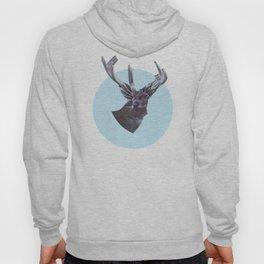 Deer in headlights Hoody