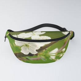 Cherry Tree Branch With White Flowers #decor #society6 Fanny Pack