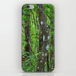 Swamp Song iPhone Skin