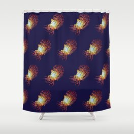 Blue Nautilus pattern Shower Curtain