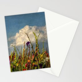 colored swords - field of Gladiola flowers Stationery Cards