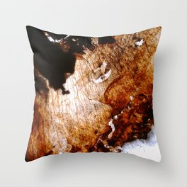 Poetry Throw Pillow