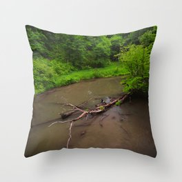 Starved Rock Throw Pillow