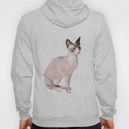 Mumbles the Sphynx Cat 02 Hoody
