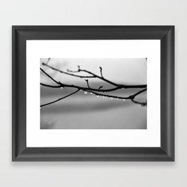 A Whisper No. 02 Framed Art Print