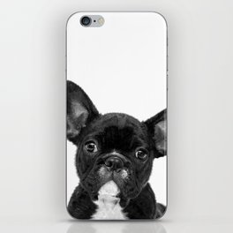 Black and White French Bulldog iPhone Skin