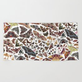 Moths of North America Pattern Beach Towel
