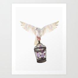 Even doves have pride Art Print