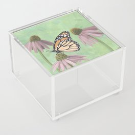 Monarch Butterfly Art, Orange Butterfly Painting Acrylic Box