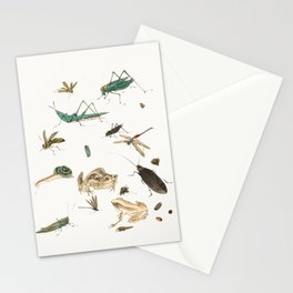 Insects, frogs and a snail Stationery Cards