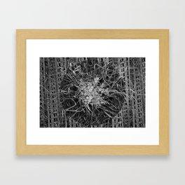 culmination Framed Art Print