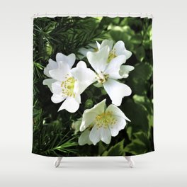 The Wild Rose Shower Curtain