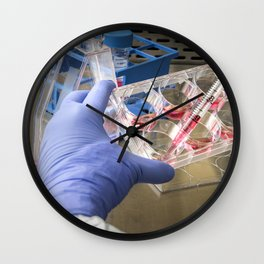 Scientist removes cell growth medium from a 6-well plate in preparation for a plaque assay which is Wall Clock