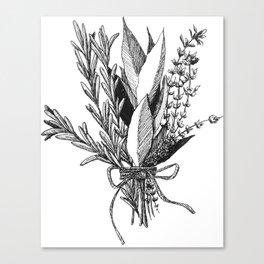 Herb Bundle Canvas Print